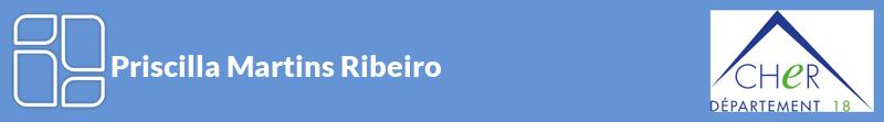 Priscilla Martins Ribeiro autoentrepreneur à ARGENVIERES