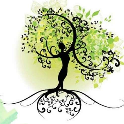 Image de profil de AB praticienne Massage Bien-être