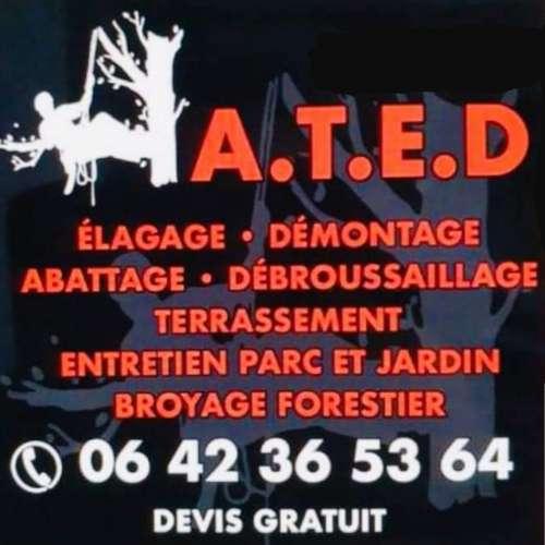 Image de profil de A.T.E.D