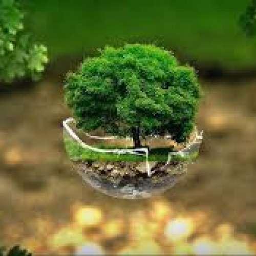 Image de profil de EcoBat-Home