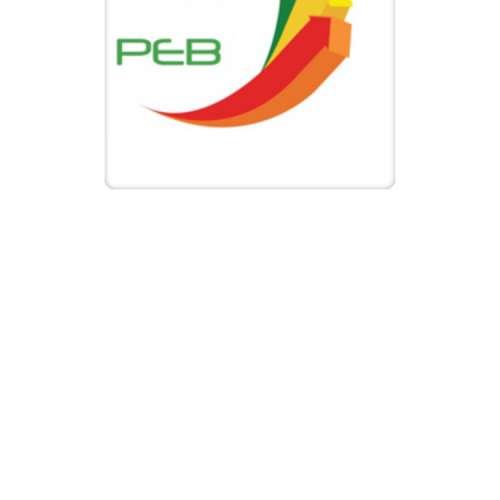 Image de profil de P.E.B ( Peintre en Batiment )