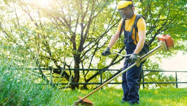 Le jardinier-paysagiste en auto-entreprise
